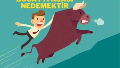 Photo of Borsada Boğa Piyasası Ne demektir? | 2021