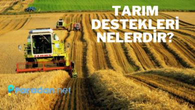 Photo of Tarım Destekleri Nedir? Çiftçiye Destekler Neler? | 2021